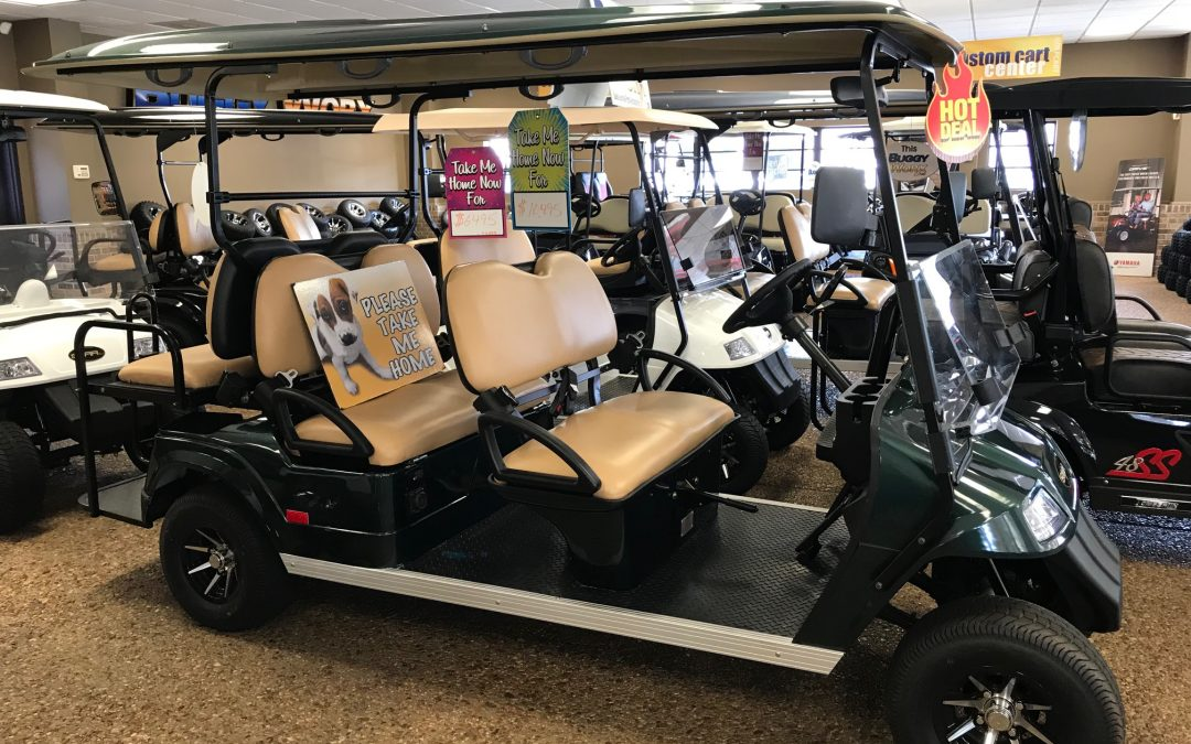 2019 Star EV Premium Electric 6 Seat Golf Cart (Green)