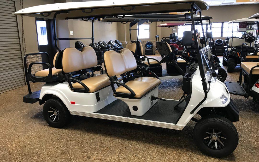 2019 Star EV Premium Electric 6 Seat Golf Cart (White)