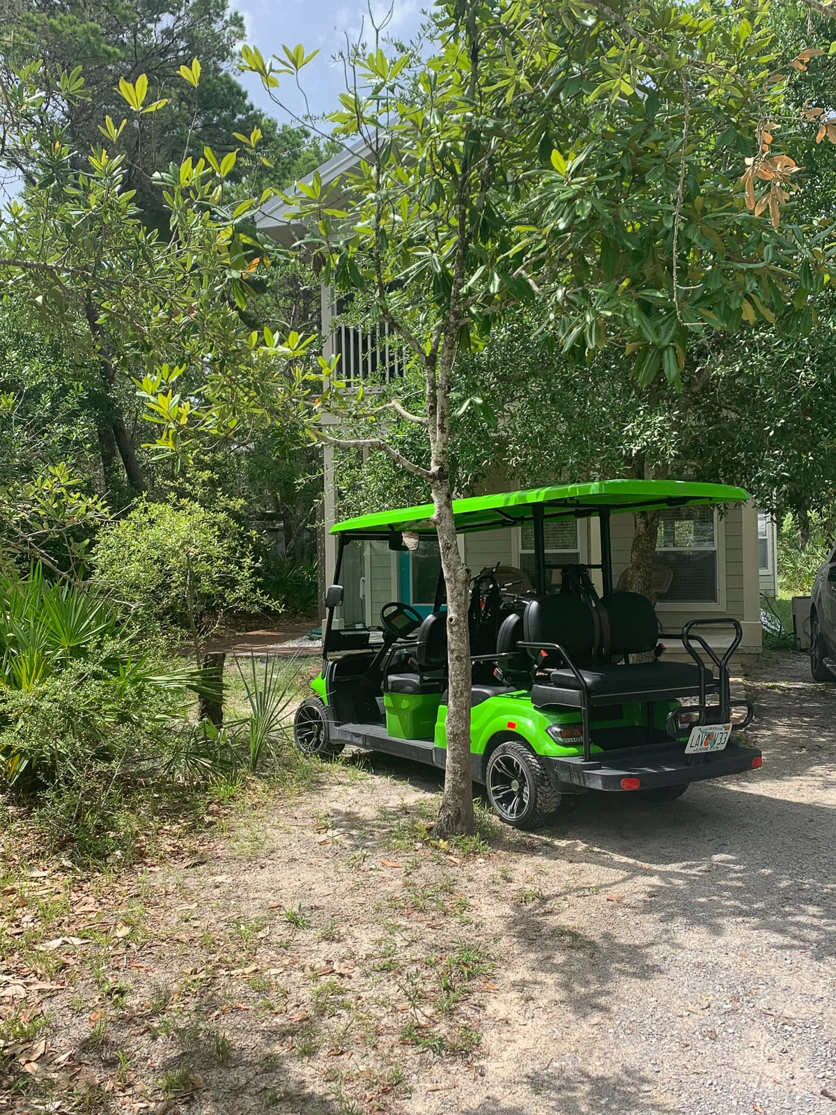 Street Legal Golf Cart Rental in Grayton Beach